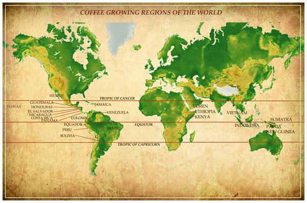 Coffee-Map21